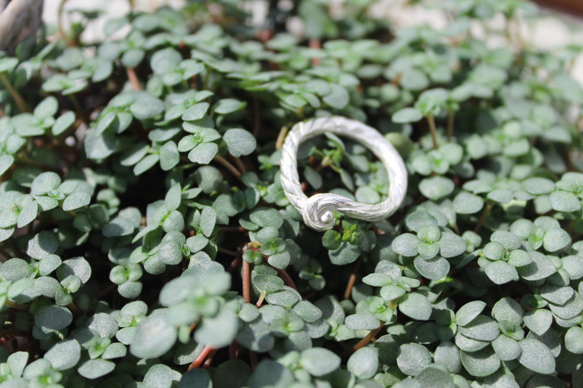 Ring Knoten